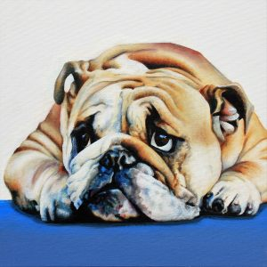 Bruno the Bulldog...(original)