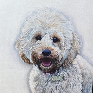 Trixie the Cockerpoo...(fine art print)