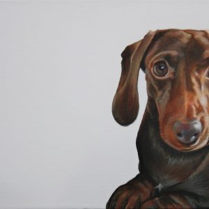 Darcy the Dachshund...(original)