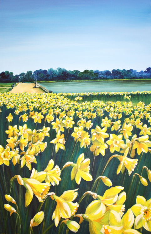 Host of Golden Daffodils (canvas print)