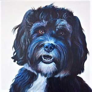 Ollie the Tibetan Terrier (canvas print)