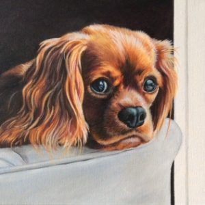 Lotte the Cavalier...(original)